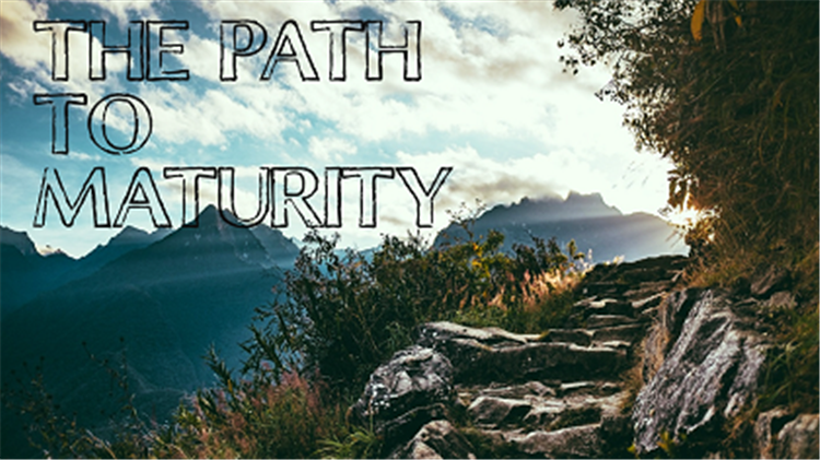 The Path to Maturity website i